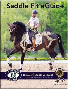 Saddle Fit Guide